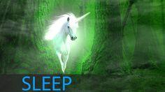 8 Horas Música de sueño profundo: Música de relajación, Música de medita...