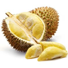 "The durian is regarded by many in Southeast Asia as the ""king of fruits."" It is distinctive for its large size, strong odour, and formidable thorn-covered husk. The edible flesh emits a distinctive odour some regard as pleasantly fragrant while others find the aroma overpowering and revolting, described variously as rotten onions, turpentine, raw sewage, and gym socks. See: ""The durian, stinking fruit, killing fruit""…"