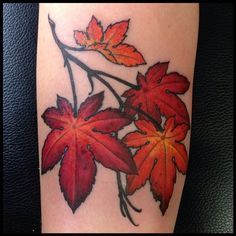 Sweet Autumn maple leaves for Rachael  #notdopeleaves #youdipshit