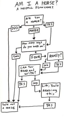 Am I A Horse? A Helpful Flowchart…just in case you were confused…! haha