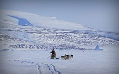 Dog sled on sea ice with Qaanaaq and the ice cap in background | Flickr - Photo Sharing!