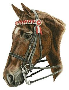 Horse Profile - cross stitch pattern designed by Tereena Clarke. Category: Horses.
