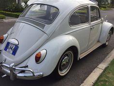 Volkswagen Escarabajo - Año 1966 - 100000 km - TuCarro.com Colombia
