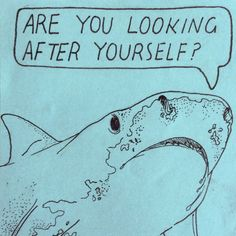 Are you taking care of yourself? — Friendly Shark