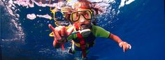 Maui SNUBA | SNUBA Diving in Maui