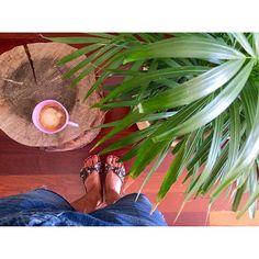 Daily power dose... #omeucafédamanha  #allthingsbotanical #plantlovers #jungalowstyle #kinfolkhome #urbanjunglebloggers