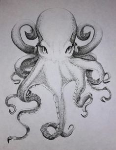 How To Draw Octopus, Octopus Tentacles Drawing, Octopus Artwork, Mini Drawings, Animal Drawings, Art Drawings, Octopus Sketch, Octopus Pictures, Sea Creatures Drawing