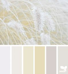 Nature Tones   design seeds   Bloglovin'
