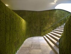 Ribbon of white stairs on moss-covered cave - Ann Demeulemeester Shop in Seoul, designed by Mass Studies, architecture by Cho,Minsuk + Park,Kisu Architecture Design, Green Architecture, Sustainable Architecture, Ann Demeulemeester, Moss Wall, Decorative Wall Panels, Moss Garden, Vertical Gardens, Vertical Planting