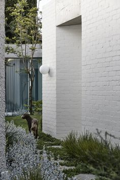 Dream Home Design, House Design, Pergola Garden, Patio, Street House, Garden Architecture, Backyard For Kids, House Entrance, Industrial House