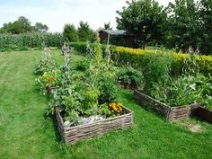 Lasagne raised garden bed explained