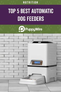Want an automatic dog feeder for your dog? We have reviews of the top 5 feeders. Our buying guide covers gravity dog feeders & electronic ones with timers. Gravity Feeder, Automatic Feeder, Dog Feeder, Healthy Pets, Pet Mat, Dog Eating, Large Dogs, Dog Food Recipes, Your Dog
