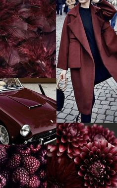 Tawny Port: profondo e sofisticato - Charme and Burgundy Aesthetic, Aesthetic Colors, Shades Of Burgundy, Burgundy Color, Magenta, Color Borgoña, Design Color, Aubergine Colour, Merian