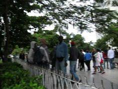 Cuba,Dia de los DDHH   Adribosch's Blog