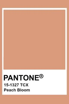 Pantone Tcx, Pantone Swatches, Color Swatches, Paint Swatches, Pantone Colour Palettes, Pantone Color, Pantone Orange, Paint Color Palettes, Aesthetic Colors