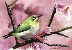 Google Image Result for http://fc06.deviantart.net/fs15/i/2007/077/a/4/Bird_watercolor_by_orcalee.jpg