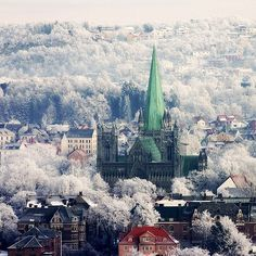 Even though I was there when it was  -20 outside. Trondheim,Norway was still a really neat city to visit