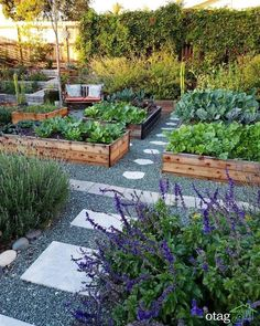 Vegetable Gardening Ideas That Will Create High Yields With Zero Effort Check mo…,Vegetable… – Different Garden Design Landscape Design Plans, House Landscape, Vegetable Garden Design, Vegetable Gardening, Container Gardening, Organic Gardening, Succulent Containers, Urban Gardening, Container Flowers