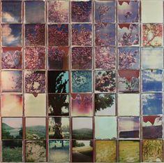 Mosaicos Fotográficos