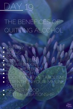 No Alcohol Challenge What happens to your body once you quit drinking ? Whiting the first days you will start to feel the benefits :) (Fitness Challenge Clean Eating) Quit Drinking Alcohol, Alcohol Detox, Benefits Of Quitting Alcohol, Alcohol Quotes, Sober Life, Body Detox, What Happened To You, Addiction Recovery, Alcohol