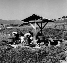 서울 시골 정릉지역 동네 공동 샘물..1970년대 풍경