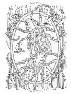 Creative Haven Incredible Insect Designs Coloring Book (Creative Haven Coloring Books): Marty Noble, Creative Haven: 9780486494999: Amazon.c...
