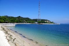 Okunoshima, a.k.a. Rabbit Island #Japan. Have you been there yet?