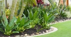 Tropical Landscaping Design - Create Your Own Getaway -