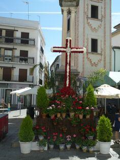 Cruz de Mayo.Plaza de la Compañia.Cordoba.