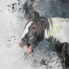 Gypsy Horse, Horse Portrait, Instagram Images, Horses, Artist, Artwork, Cute, Animals, Work Of Art
