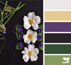 petaled hues - this color palette really grabs me.  I always like purple with green plus add in the soft golden brown and gray - wow!