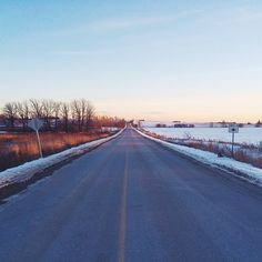 Find Momo on a winter country road.
