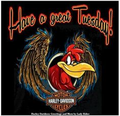 Have a great Tuesday Vw Trikes For Sale, Harley Davidson Quotes, Biker Quotes, Biker Sayings, Motor Harley Davidson Cycles, Harley Davison, Harley Bikes, Cool Bikes, Tuesday