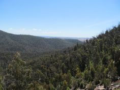 Day 329 ... View from the top of the falls. Weekend hike/camp @ Murrundindi. (Explorer level - blue).