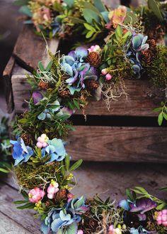 Hortensia, alkottar, mossa, tilandsia och snöbär - Lantliv