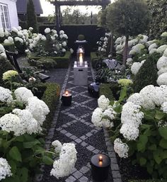White hydrangeas add interest and structure to this small formal garden