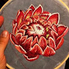 1,516 отметок «Нравится», 22 комментариев — Jess De Wahls (@jessdewahls) в Instagram: «Ouch..... . . . . . . . . . . . . . #embroidery #broderie #bordado #protea #botanical…»