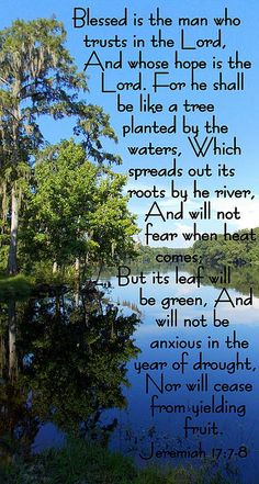 Jeremiah 17:7-8. Grow roots deeply in the Living Waters to be free from fear and worry.