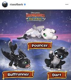 Eclipse, Dusk and Dawn is fake names Httyd Dragons, Dreamworks Dragons, Cute Dragons, Disney And Dreamworks, How To Train Dragon, How To Train Your, Disney Dragon, Dragon Tales, Beautiful Dragon
