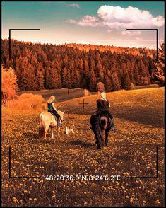 Alla scoperta di Alpirsbach e delle meravigliose attrazioni della Foresta Nera in Germania. Un ringraziamento speciale a @anastasia_elena_photographer che ha raggiunto il maggior numero di like al nostro gioco #viaggifuorirotta in arancione. Germania, Anastasia
