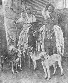 Kazakh hunters with Kazakh hound tazy