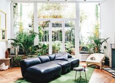 Parisian apartment of Jean-Christophe Aumas with blck leather sofa and green plants. #plants #greenery #blacksofa #leathersofa #leathercouch #paris #parisian #herringbonefloors #woodfloors #houseplants #indoorplants #european #vintagefurniture #vintagefurnishings