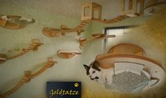 Goldtatze Katzenzimmer & Natur Kratzbaum - interieure aus Holz Cat Tree ...