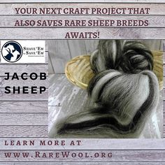 Wool Yarn, Wool Felt, Jacob Sheep, Sheep Breeds, The Shepherd, Craft Projects, Faith, Etsy, Things To Sell