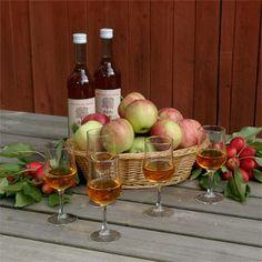 Alitalon viinitila-Lohja