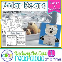 Polar Bears: Informa