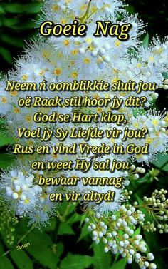 Evening Greetings, Afrikaanse Quotes, Goeie Nag, Goeie More, Good Morning Gif, Good Night Quotes, Prayer Quotes, Pretty Wallpapers, Word Of God
