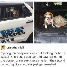 30 Funny Pictures For Today (#75)