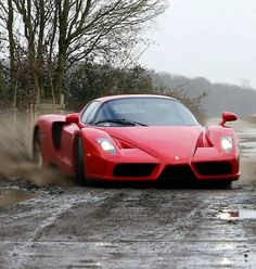 WTF! A #FerrariEnzo going rallying with the #TaxTheRich guys! One of the videos of 2013...Hit the pic to watch!