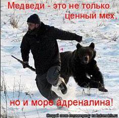 но и море адреналина! Медведи - это не только ценный мех,...